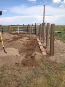 South posts of new loading chute are in and the rest of the holes are waiting for posts!