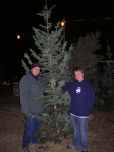 Picking the Christmas tree ritual!