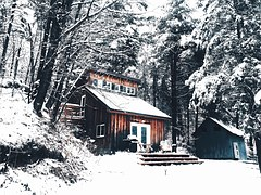 cabin-1081847__180